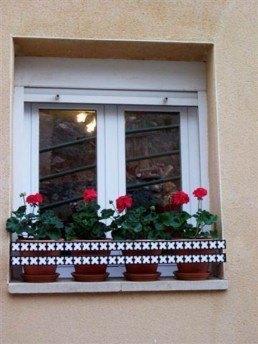 Salvatiestos o protector para ventanas